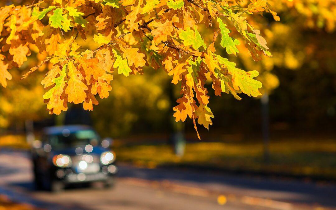 6 Essential Fall Car Care Tips