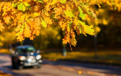 6 Essential Fall Car Care Tips